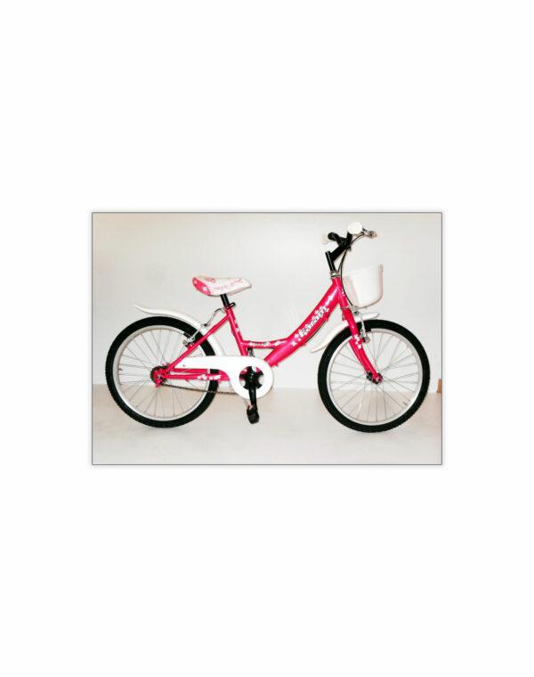 "Bici 20"" Art. Girl04"